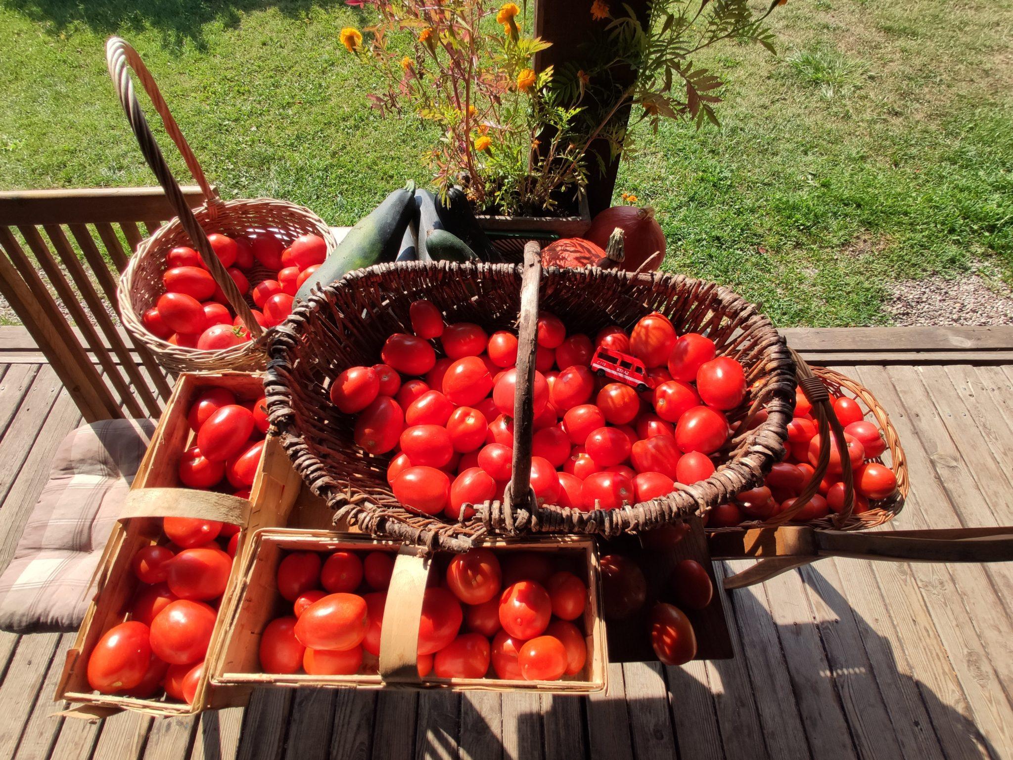 Pyszne jedzenie z naszego ogródka